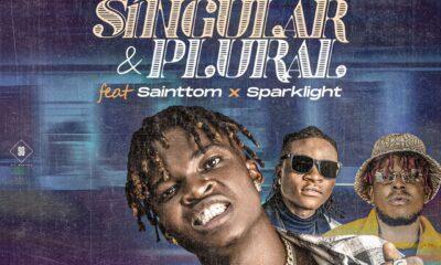 Lil Pink - Singular & Plural Ft. Saintthom X Sparklight